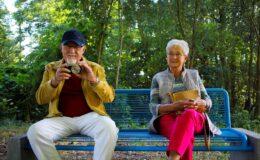 Aktywni seniorzy poszukiwani!